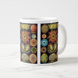 Ascidiae by Ernst Haeckel, Vintage Marine Animals Giant Coffee Mug