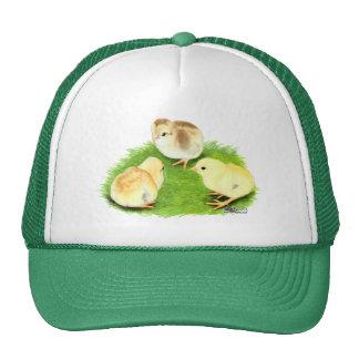 Aseel Wheaten Chicks Trucker Hat