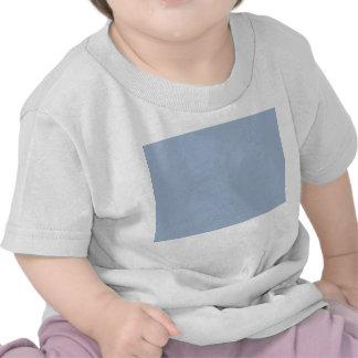 Ash georgian egg shell blue shirt