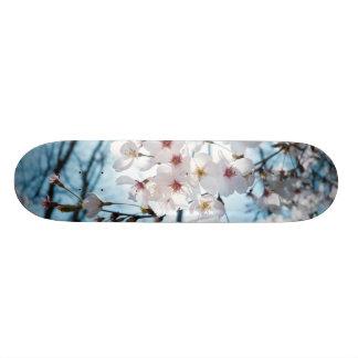 Asia Cherry Blossoms Skate Deck