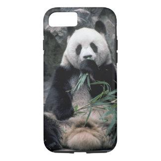 Asia, China, Chundu, Giant panda iPhone 7 Case