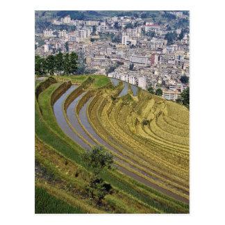 Asia, China, Yunnan Province, Jinping. Jinping Postcard