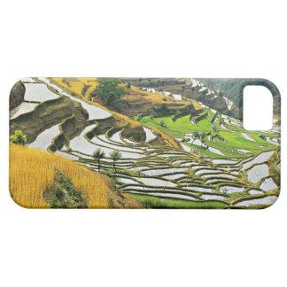 Asia, China, Yunnan, Yuxi Prefecture; Yuanjiang. iPhone 5 Covers