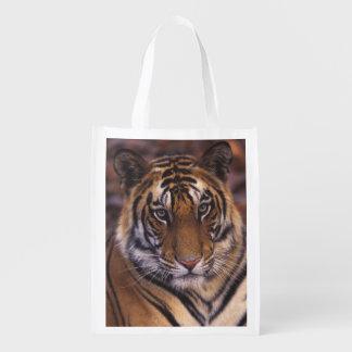 Asia, India, Bandhavgarth National Park, Reusable Grocery Bag