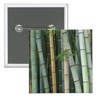 Asia, Japan, Kyoto, Arashiyama, Sagano, Bamboo 2 Inch Square Button