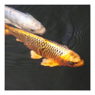 Asia Koi Fish Magnetic Invitations