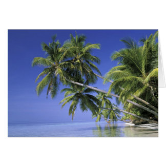 Asia, Maldive Islands. Man in hammock on 2 Card