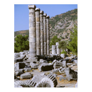 Asia, Middle East, Turkey, Ephesus. Temple of Postcard