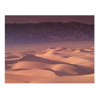 Asia, Mongolia, Gobi Desert, Gobi Gurvansaikhan Postcard