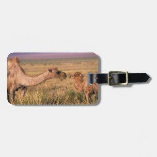 Asia, Mongolia, Gobi Desert, Great Gobi Luggage Tag