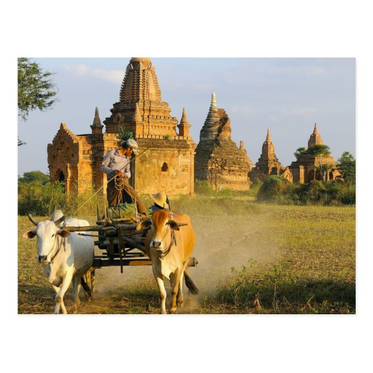 Asia, Myanmar (Burma), Bagan (Pagan). A cart is Postcard