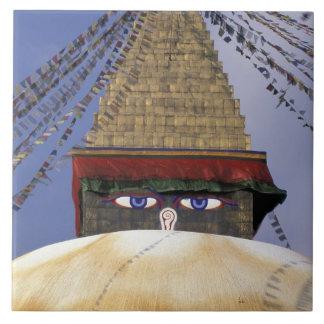 Asia, Nepal, Kathmandu. Bouddhanath Stupa. 2 Tile