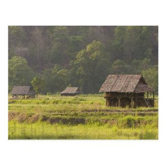 Asia, Thailand, Mae Hong Son, Rice huts in the Postcard
