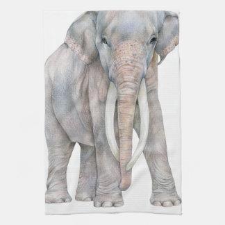 Asian Elephant Bull Kitchen Towel