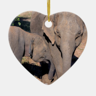 Asian elephant calf feeding from mother Sri Lanka Ceramic Ornament