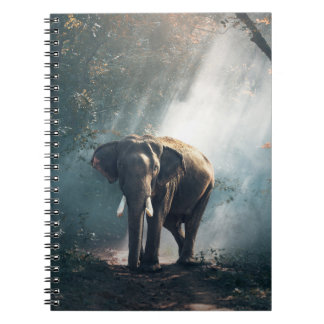 Asian Elephant in a Sunlit Forest Clearing Notebooks