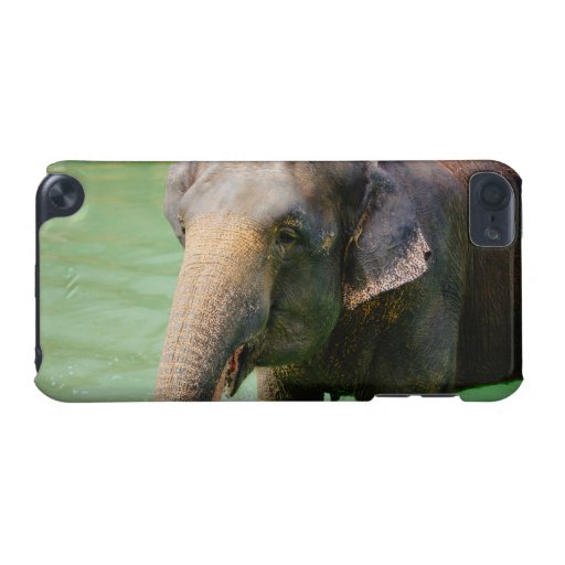 Asian Elephant In Green Water, Animal Photo iPod Touch (5th Generation) Case