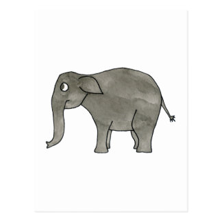 Asian Elephant. Postcard