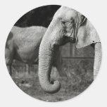 Asian Elephants Stickers
