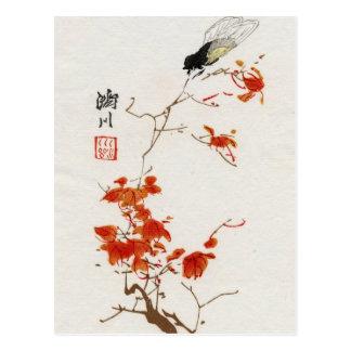 Asian Flower Blossom Vintage Postcard
