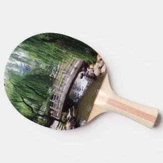 Asian Garden 1 Ping Pong Paddle