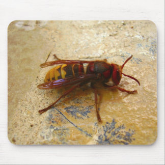 Asian Hornet Mouse Mat