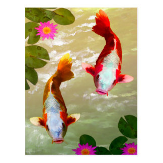 Asian Koi Fish Carp Digital Art Postcard