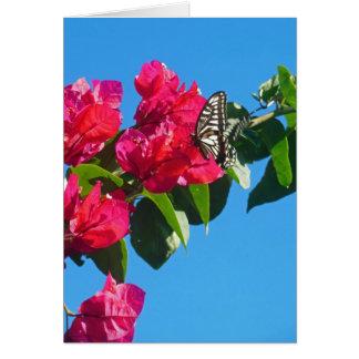 Asian Swallowtail Butterfly Card