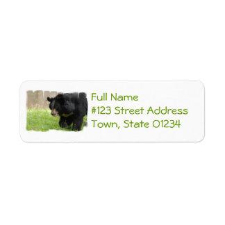 Asiatic Black Bear Mailing Label Return Address Label