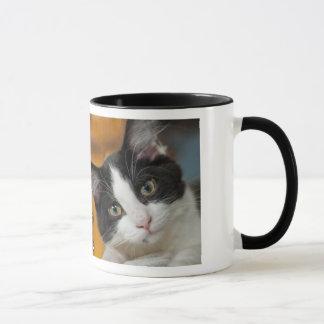 Asio and Otis Kitties Mug