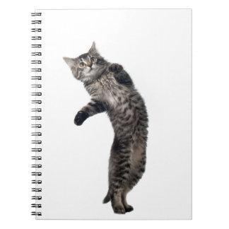 Asio Dancing Spiral Notebook