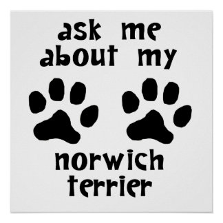 Ask Me About My Norwich Terrier Posters
