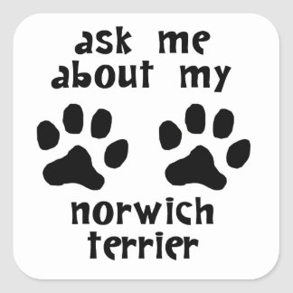 Ask Me About My Norwich Terrier Square Stickers