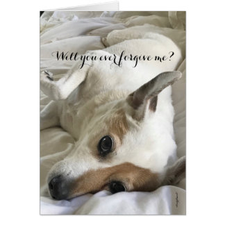 Asking For Forgiveness From A Dog-Lover Card