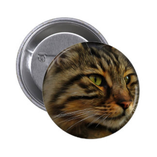 Aslan The Long Haired Tabby Cat 2 Inch Round Button