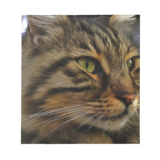 Aslan The Long Haired Tabby Cat Notepad