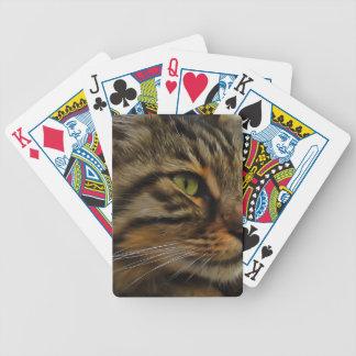 Aslan The Long Haired Tabby Cat Poker Deck