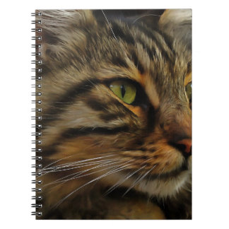 Aslan The Long Haired Tabby Cat Spiral Note Books