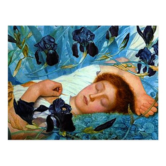Asleep in the Irises Postcard