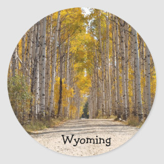 Aspen Alley In Autumn Classic Round Sticker