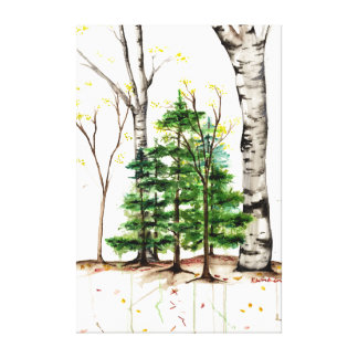 aspen and pine tree canvas