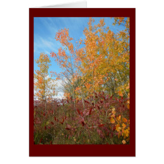 Aspen and Sumac Against Wisconsin Sky Blank Card
