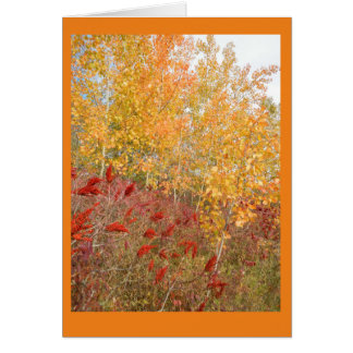Aspen and Sumac Blank Note Card