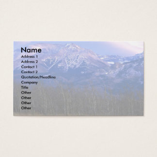 Aspen forest in the Rocky Mountain Foothills, Albe Business Card