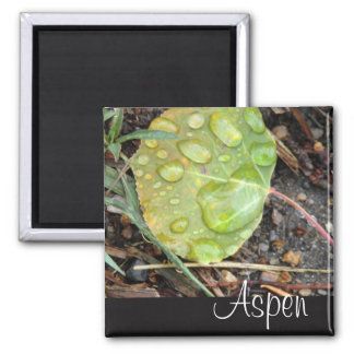 Aspen fridge magnet