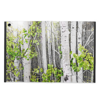 Aspen grove iPad air case