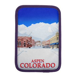 Aspen iPad Mini Sleeve