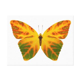 Aspen Leaf Butterfly 1 Canvas Print