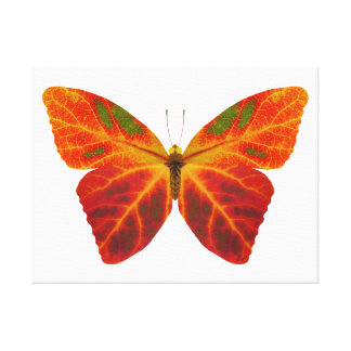 Aspen Leaf Butterfly 2 Canvas Print