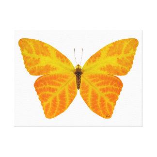 Aspen Leaf Butterfly 3 Canvas Print